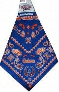 Gators Bandana at The Gator Shop
