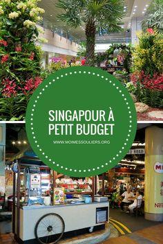 Si vous avez des millions à dépenser, j'ai trouvé la ville parfaite pour vous. Bon, c'est vrai, c'est complètement insensé de commander un cocktail à 26 $ ou de manger une pizza individuelle à 27 $, mais quand j'ai visité Singapour en juillet dernier, je n'avais vraiment pas ce genre d'épaisseur à mon portefeuille, alors j'ai dû faire preuve de créativité. #Singapour #Budget #Voyage #Information #Guide #Hébergement #Bouffe #Information