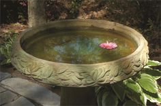 Quality concrete bird baths available in a large variety of styles, sizes, stains, colors & finishes with fast affordable shipping & great customer service. Ceramic Bird Bath, Concrete Bird Bath, Cast Stone, Outdoor Living, Outdoor Decor, Vintage Modern, Birds, Ceramics, Pretty