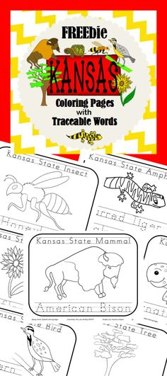 kansas state symbols coloring pages.html