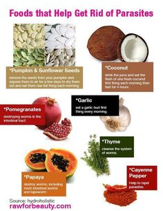 Foods that helps get rid of parasites :)