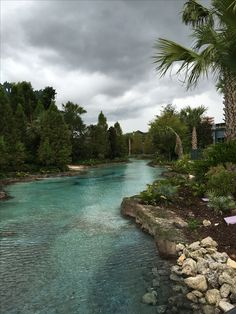 Disney Walk - Orlando