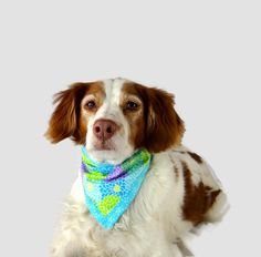Spring Dog Bandana - Dog Easter Bandana - Clip on Pet Bandana - Reversible Dog Bandanna - Pet Bandana - Pet Accessories - Dog Scarf Easter by blanketsinbloom on Etsy