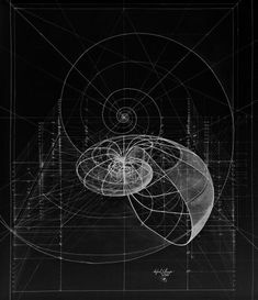 New Tattoo Geometric Nature Sacred Geometry Golden Ratio Ideas Mathematics Geometry, Sacred Geometry Symbols, Illustration Photo, Illustrations, Golden Ratio Spiral, Fibonacci Golden Ratio, Tattoo Geometrique, Logarithmic Spiral, Spirals In Nature