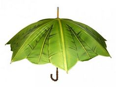Banana leaf umbrella - I actually own this bumbershoot! Love it on a dreary day! Shade Umbrellas, Colorful Umbrellas, Umbrellas Parasols, Umbrella Art, Under My Umbrella, Beach Umbrella, Fancy Umbrella, Umbrella Painting, Clear Umbrella