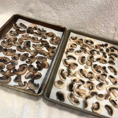 If you're a mushroom lover, this post is for you! You will learn step by step how to freeze mushrooms so you have them all year long. Can You Freeze Mushrooms, Freezing Mushrooms, Freezer Recipes, Freezer Meals, Canned Food Storage, Mushroom Recipes, Food Hacks, Stuffed Mushrooms, Frozen