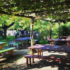 Pergola, Picnic Table, Outdoor Furniture, Outdoor Decor, Natural Garden, Recovery, Road Trip Destinations, Outdoor Pergola, Picnic Tables