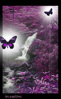 Purple Peace