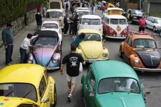 VW parade in Bellingham WA.