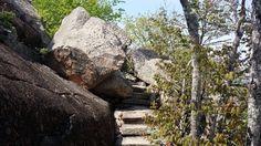 ladder trail on Dorr