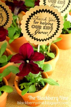 Free printable teacher card to go in a small potted herb | Blackberry Vine