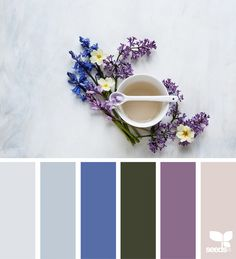 Color Spring | design seeds | Bloglovin'