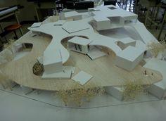 105東海大.3年設計課題.「小学校の豊かさ」