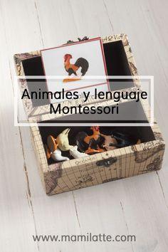 Animales y lenguaje en la pedagogía Montessori. – Mamilatte
