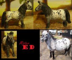 customized and repainted schleich shetlander stallion