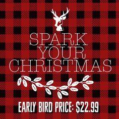 Spark your Christmas Workshops