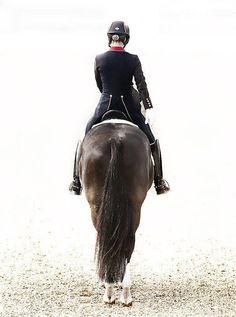 """Valegro"" || Charlotte Dujarin aboard Valegro | equestrian equine cheval pferde caballo | black dressage halt and salute rearview"