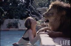 Incredible Photographs Capture Teenager Melanie Griffith and Her Family Hanging Out With Their 'Pet' Lion in 1971