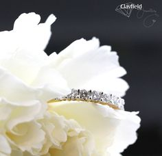 Beautiful claw set diamond wedder, by Clayfield Jewellery in Nundah Village - North Brisbane. Fine Jewelry, Jewelry Making, Jewellery, Brisbane, Diamond Engagement Rings, Wedding Rings, Jewels, Beautiful, Jewerly