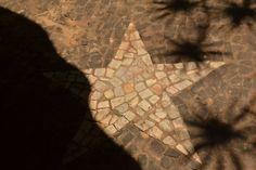 Parte da estrela coberta por sombra mais escura e rodeada por sombras de outras folhagens em forma de estrela.