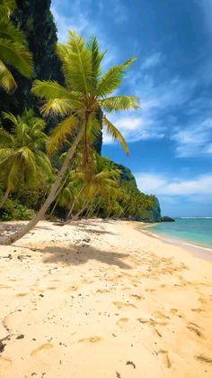 amazing beautiful tropical island