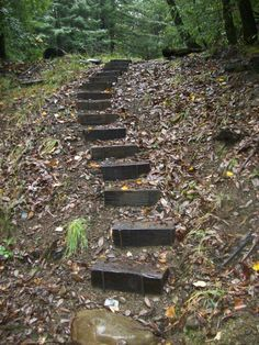 woodsy timber steps - Google Search