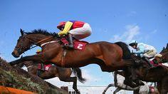 Spender tops Marsh field - Horse Racing - Erupt Sports