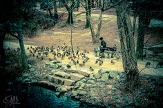 Feed the birds by Alan Scherer on 500px
