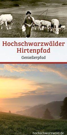 Ein Genießerpfad mit wunderbaren Aussichten,  blühenden Wiesen und spannenden Informationen zum Hirtenleben im Schwarzwald am Wegrand.