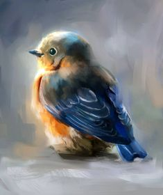Blue bird by Fievy on DeviantArt - Animals Bird Painting Acrylic, Watercolor Bird, Painting & Drawing, Watercolor Paintings, Dress Painting, Acrylic Canvas, Blue Bird Art, Bird Drawings, Bird Pictures