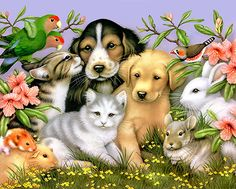 pet-sitting.jpg 432×346 pixels