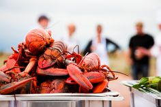 Prince Edward Island beaches, golf courses, food and other things to do in Charlottetown for an island holiday in Canada. Prince Edward Island, Lobster Dinner, Discover Canada, Canada Holiday, East Coast Road Trip, Atlantic Canada, Visit Canada, Newfoundland And Labrador, Island Beach