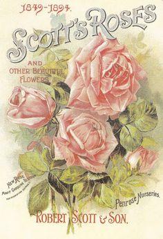 Vintage Garden-Inspired Art Scans