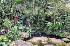 Great work Bali Botanic Garden!!!  .  .  .  .  #indonesia #bali #wonderfulindonsia #balibotanicalgarden #waterfall  #captureonepro #lonelyplanet #travelstoke #natgeo #natgeoadventure #natgeotravel #yourshotphotographer #sony #adventure #backpacking #digitalnomad #rx100iv #travel #travelblog #travelblogger  #awesome_earth #mkexplore #trappingtones #marvelshots #global_hotshotz #roamearth #earthexperience #earthexplorer #depthsofearth #beautifuldesinations