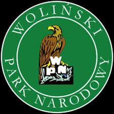 Image result for woliński park narodowy