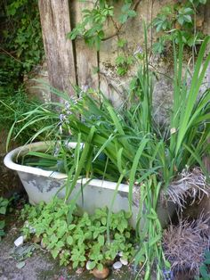 Garden Whimsy, Deco, Projects To Try, Coin, Inspiration, Nature, Plants, Architecture, Garden