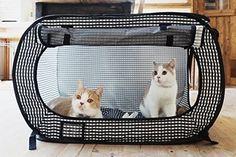 Portable Cat Crates http://www.catsonyards.com/shop/