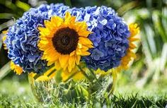 sunflowers and hydrangeas - Google Search