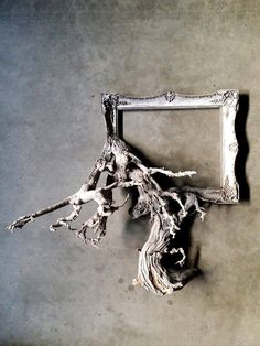 Fusion Frames NW, making distinct Fusion Frame tree branch art since A reclaimed tree branch, a re-purposed frame, and my passion — Darryl Cox, Jr. Driftwood Frame, Driftwood Projects, Driftwood Sculpture, Driftwood Ideas, Rama Seca, Branch Art, Wood Creations, Tree Art, Frames On Wall