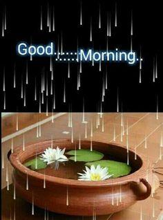 Rainy Morning Quotes, Good Morning Smiley, Good Morning Rainy Day, Good Morning Nature, Good Morning Msg, Good Morning Cards, Good Morning Greetings, Morning Gif, Wednesday Morning