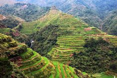 Rice Terraces in Banaue Ifugao, Philippines Clark International Airport, Banaue Rice Terraces, Time Out, Continents, Cool Places To Visit, Time Travel, Philippines, The Good Place, River
