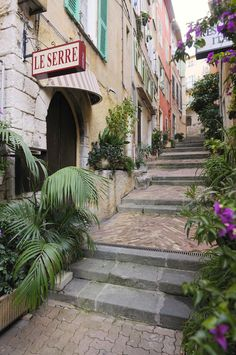 Le Serre always has great food and isn't too expensive. Villefranche-sur-Mer, French Riviera.