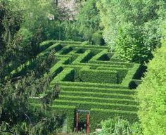Hedge maze at Castello of San Pelagio, near Padova