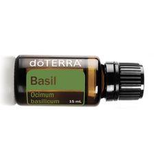 Basil Essential Oil, Essential Oils, Doterra, Essential Oil Uses, Essential Oil Blends, Doterra Essential Oils