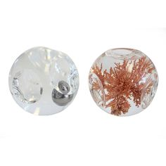 Pair Lucite Paperweights