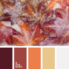 Bright and eye-catching palette. Deep autumn shades share their warmth and it becomes cozy and comfortable in one's soul. Burgundy, hot orange, red-brown,.