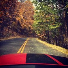 Fall morning drive on Grandview Dr., Peoria, IL. World's most beautiful drive per T. Roosevelt.