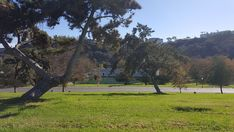 2 Single Grave Spaces on Sale Now $18K for both! El Camino Memorial Park San Diego, CA Loma Siesta The Cemetery Exchange
