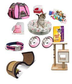 """Cat room"" by natashaxmas on Polyvore featuring interior, interiors, interior design, home, home decor, interior decorating and Vesper Dresses"