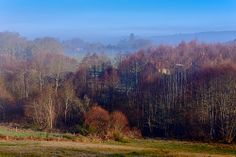 Enter the Mist #YesYouAre #Limousin